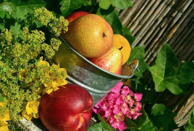 Vitamina A: saiba os benefícios dela para a sua saúde