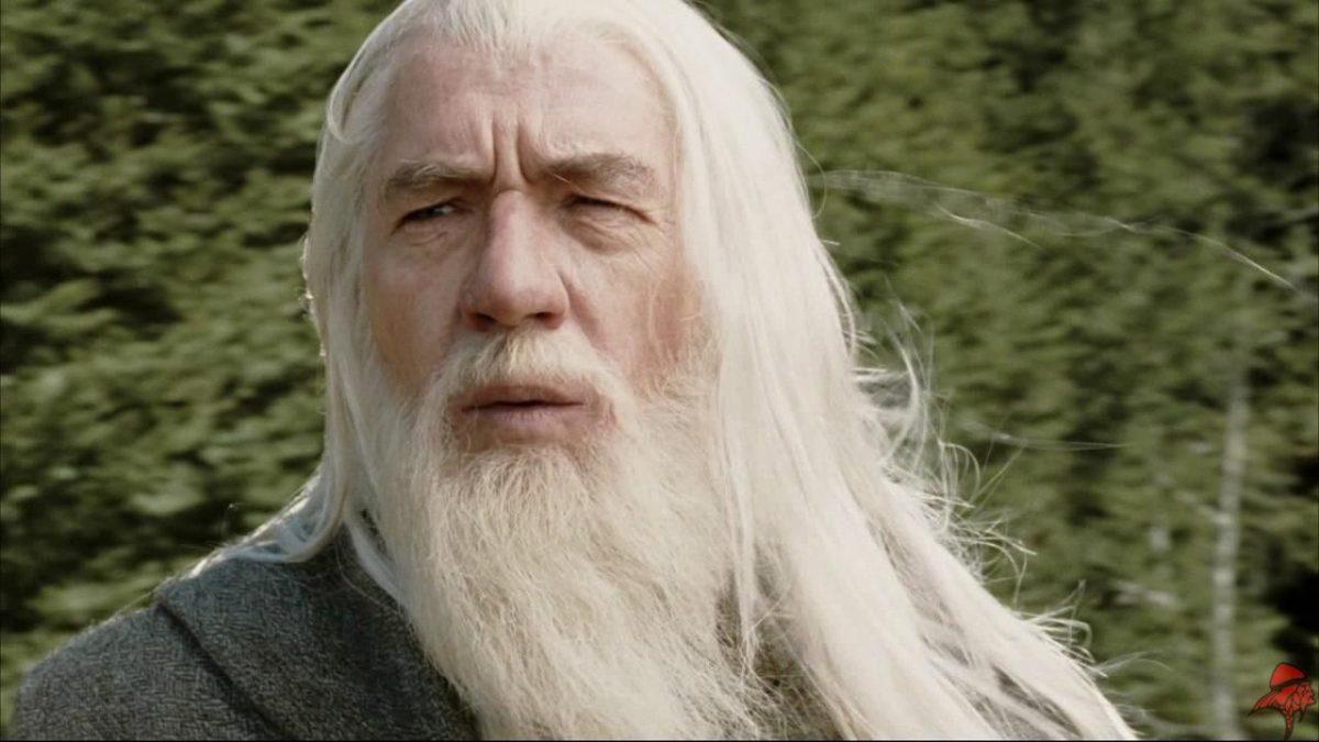 barba do gandalf do senhor dos aneis